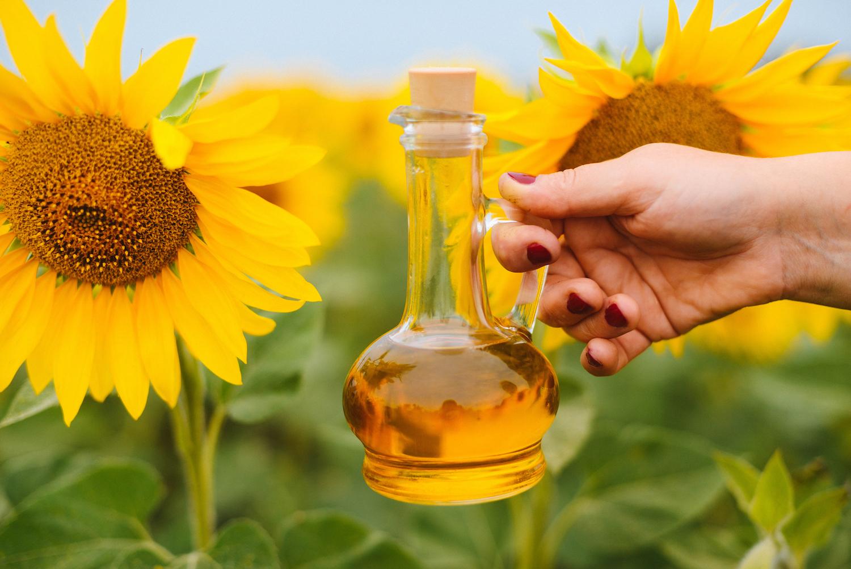 Производство растительного масла, шрота и пеллет