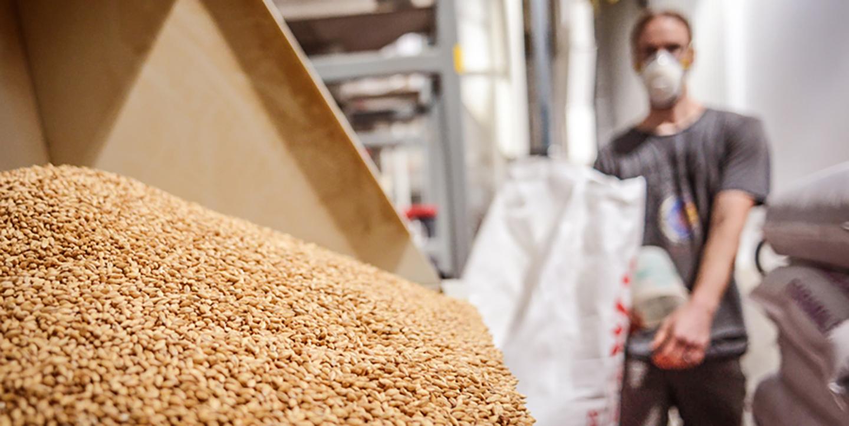 Хранение и переработка зерна