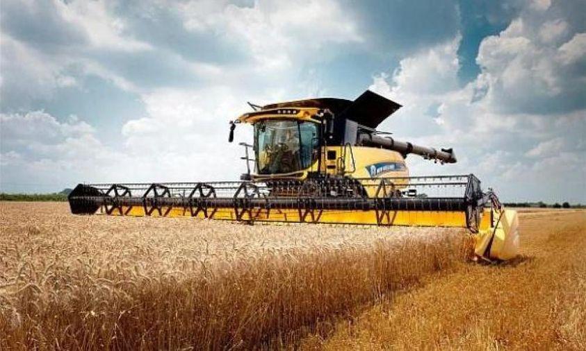 В Ristone Holdings завершен сбор ранних зерновых