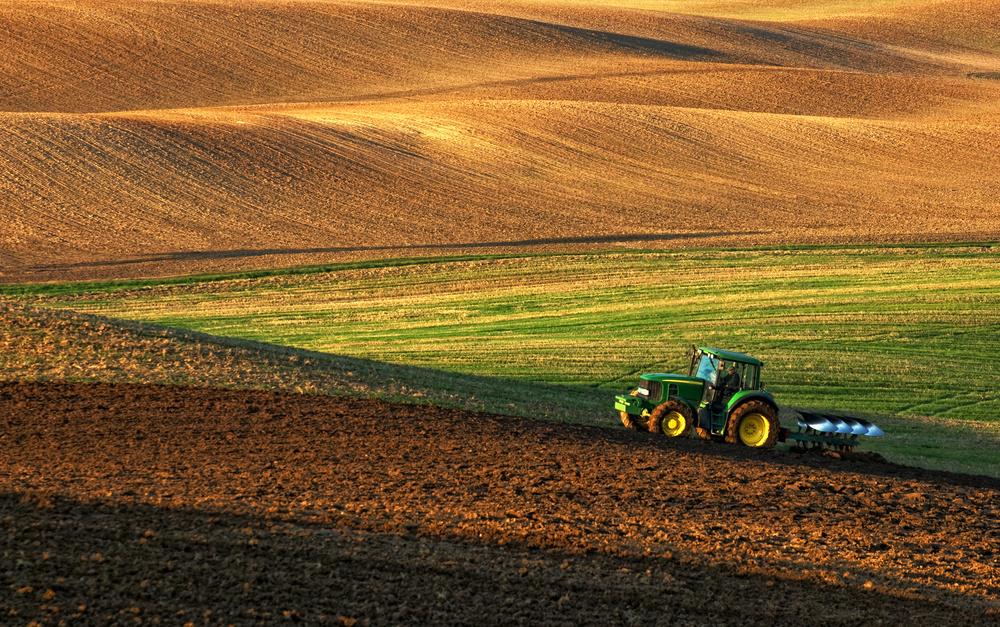 Агрохолдинг Ristone Holdings розпочав щорічну інвентаризацію активів