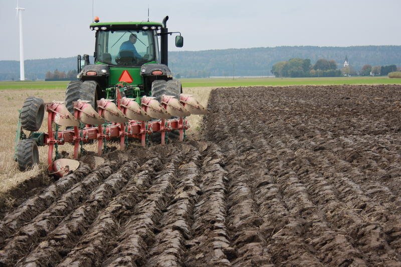 В Ristone Holdings завершили полевые работы