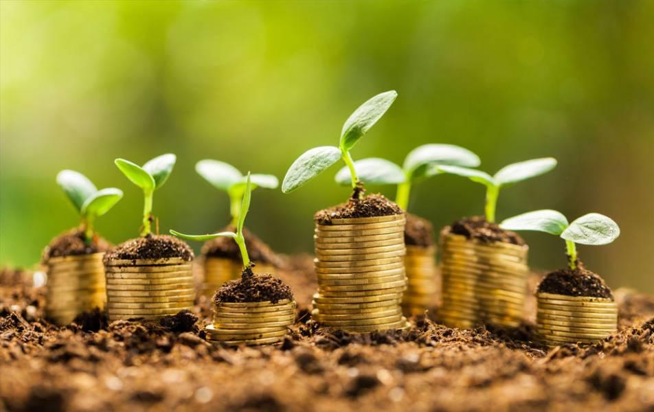 Ristone Holdings у січні знизив кредитне навантаження на 1 млн $