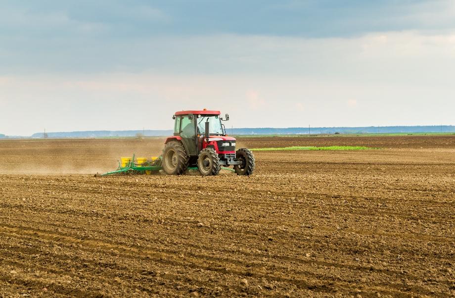 У Ristone Holdings стартувала весняна посівна