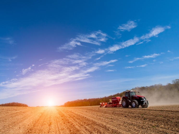 У Ristone Holdings завершили весняну посівну