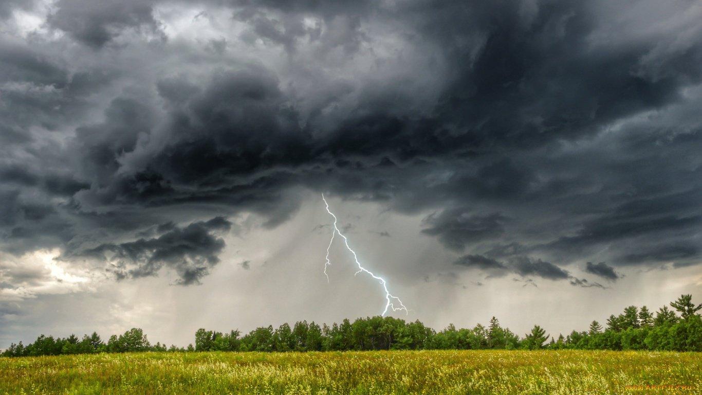 Ситуация на полях: от засух к избыточным дождям – как затяжные июньские ливни отразились на посевах