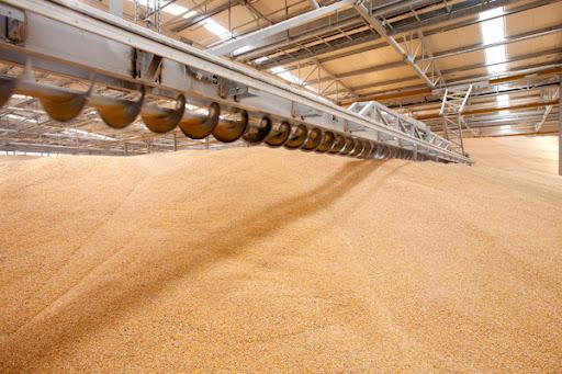 Елеватори Ristone Holdings прийняли на зберігання 50 тис. т зернових культур