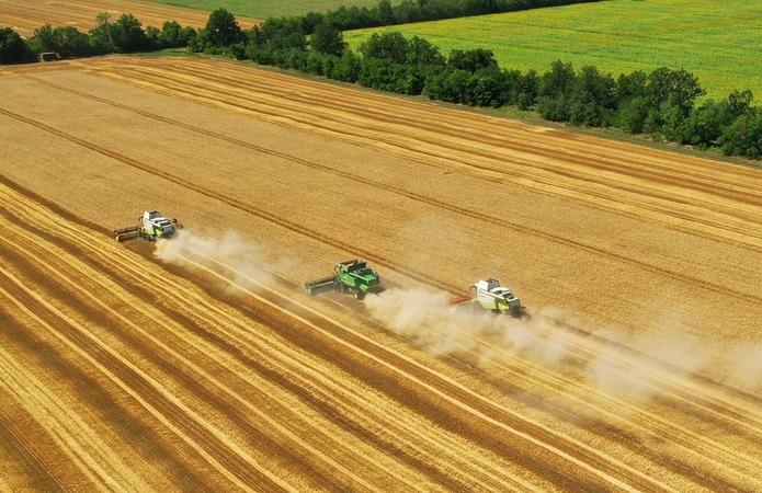 У Ristone Holdings завершилася збиральна компанія ранніх зернових
